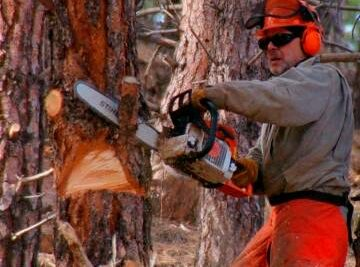 Training Course in Chainsaw Operations