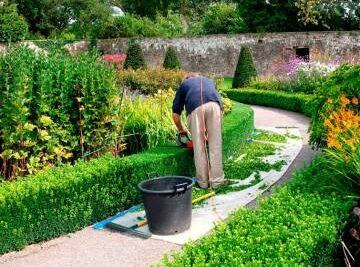 Training Course in Conservation and Maintenance of Green Spaces