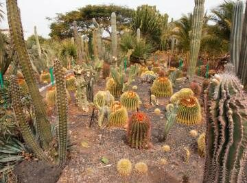 Training Course in Xeriscaping
