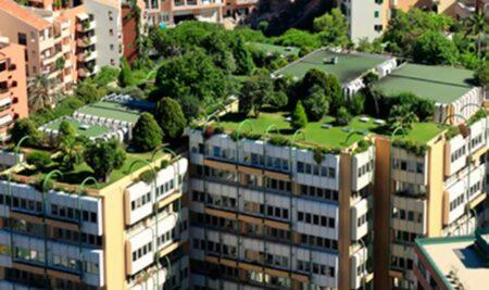 ¿Conoces los beneficios de los jardines en los tejados? Son muy interesantes para mitigar los efectos de la contaminación y el cambio climático en las ciudades