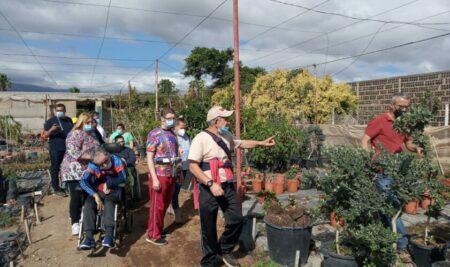Hemos hecho una visita a Viveros Blomia con nuestros compañeros del Centro Ocupacional de Santa Brígida: hemos pasado la mañana rodeados de plantas y aprendiendo en el vivero